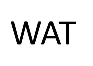 WAT doet Maathuis